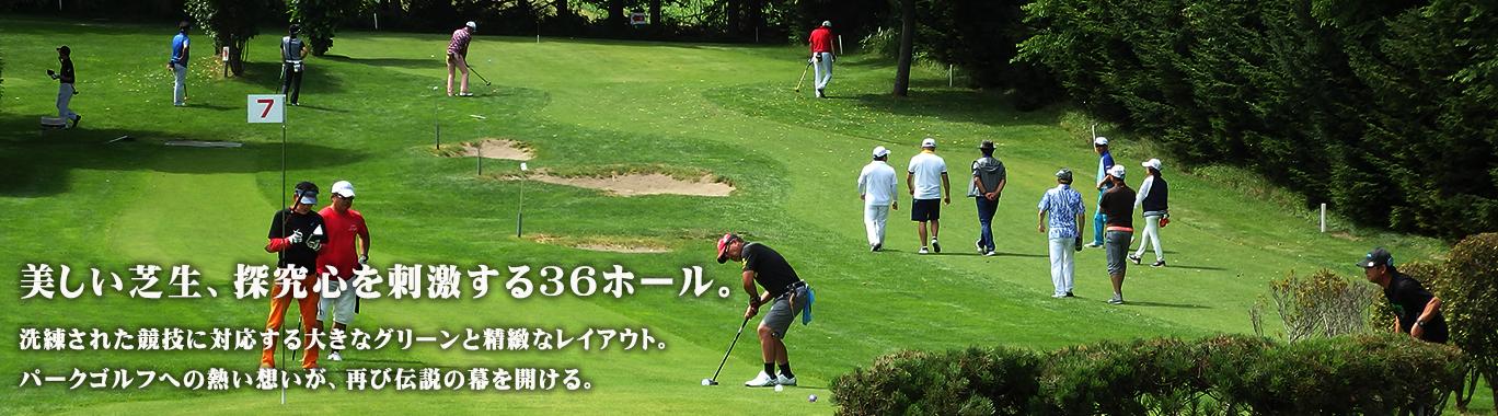 R132 - メイプルパークゴルフコース